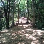 高尾山稲荷山コースの難易度や所要時間、距離は?子供でも登れる?