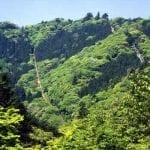 高尾山登山の上級者コースとは?縦走ルート難易度や所要時間は?
